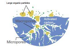 szén_működés
